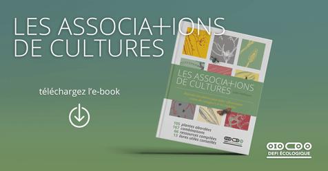 Télécharger Les associations de cultures