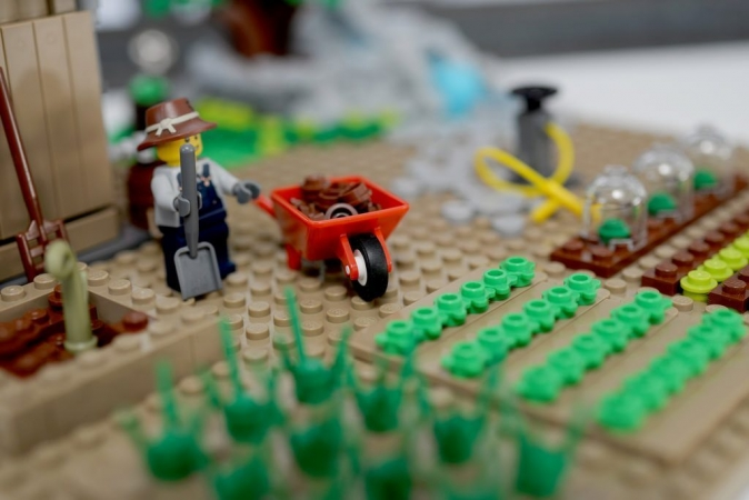 Associations de cultures ou jardinage traditionnel ? Mise en scène potagère de Legos