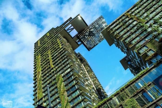 Quand il est question de biodiversité en ville, le patrimoine bâti a un rôle prépondérant à jouer