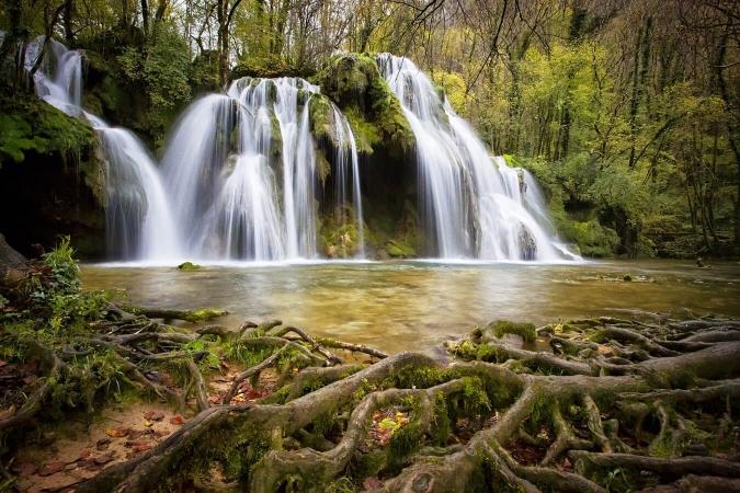 La bioindication permet d'évaluer la qualité d'eau des cascades et des cours, par exemple en milieu forestier