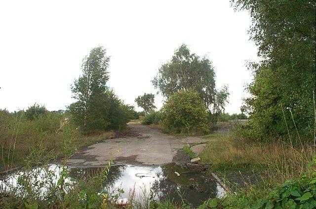 Friche abandonnée doucement re-colonisée par la nature