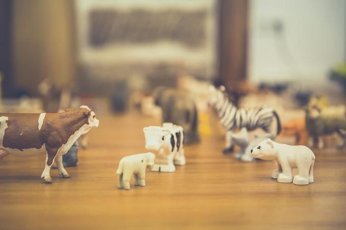 Les zoos, un lieu privilégié d'éducation à l'environnement