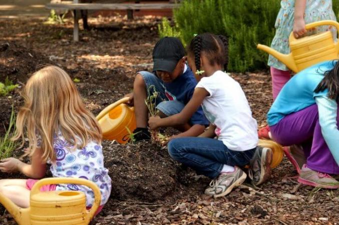 Enfants en train de jardiner