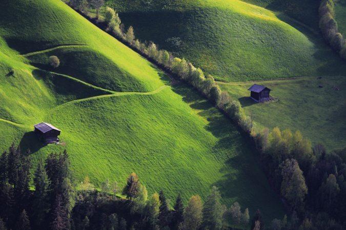 Haie champêtre agricole