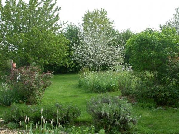 Mon jardin plein de vie