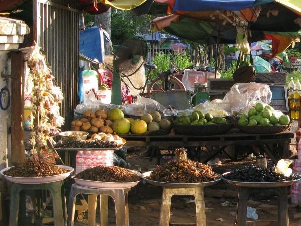 Étal d'insectes à manger au Cambodge